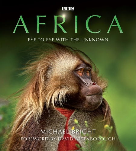 Africa_Michael_Bright_cover_art